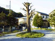 高柳丸山下2号公園