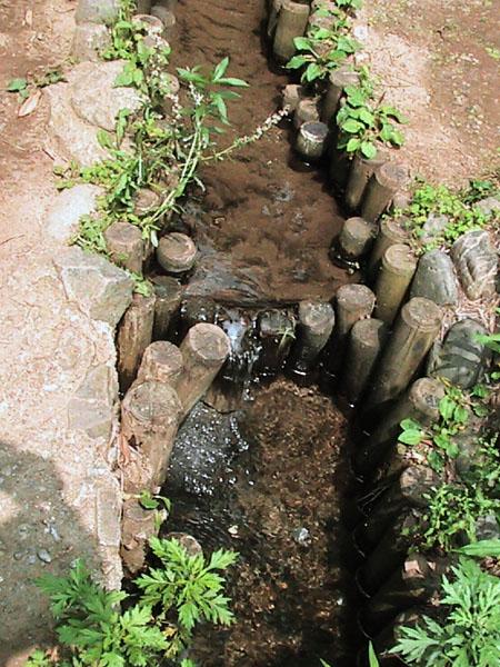 宮の下湧水