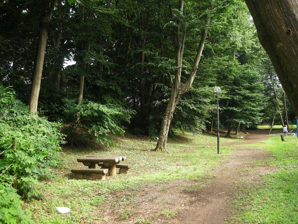 西佐津間公園