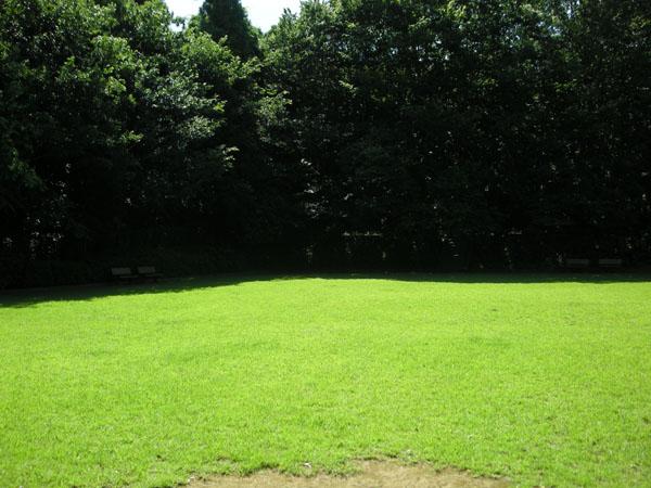 6号逆井緑地
